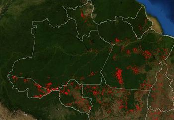 Latifundiários da Amazônia tem a maior concentração de trabalho escravo