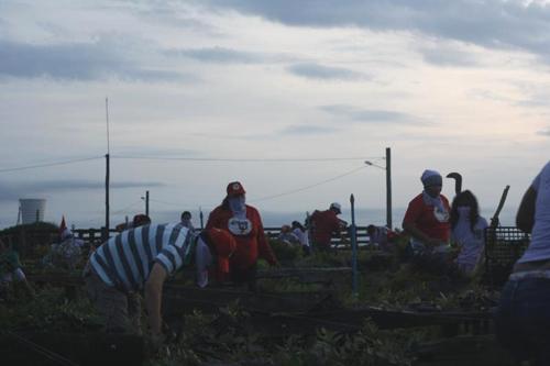 Mulheres da Via Campesina ocupam fazenda da ruralista Kátia Abreu no TO