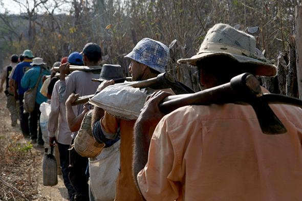 Ruralistas e a existência do trabalho escravo no Brasil: a negação da verdade