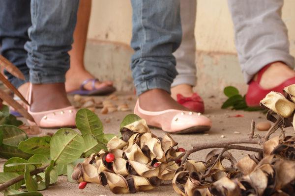 Sem Terra iniciam curso de Especialização em Agroecologia no Pará