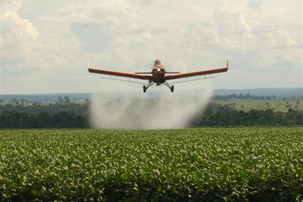 Após transgênicos, Brasil se tornou o maior consumidor de agrotóxicos