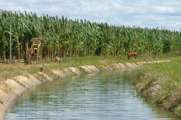 Depois de explorar trabalhadores do nordeste, agronegócio demite 6 mil