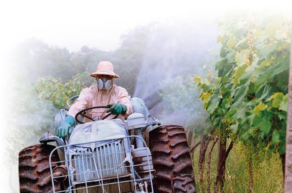 Misteriosa doença fatal tem sua causa descoberta: os agrotóxicos da Monsanto