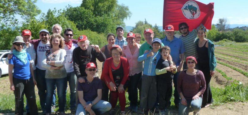 Amigos do MST na França plantam solidariedade e politizam a terra