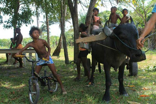 """""""Somos Zumbi"""", dizem quilombolas do Marajó contra o agronegócio"""