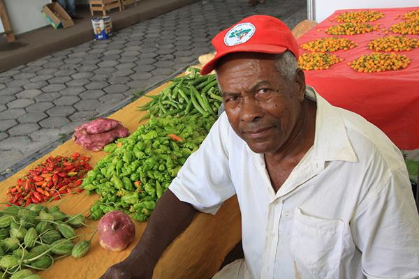 Sem Terra expõem sua produção em Feira da Agricultura Familiar