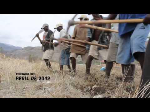 Há seis anos, Brigada Dessalines, do MST, contribui com o povo haitiano