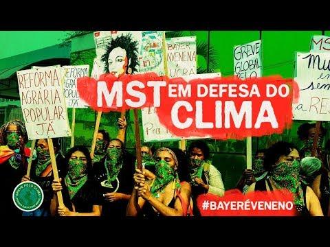 Bayer/Monsanto é VENENO