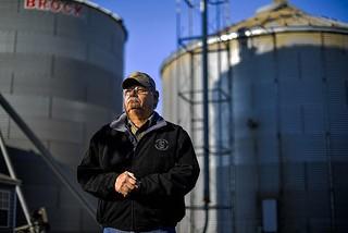 Nos EUA, produtores começam a plantar lavouras não transgênicas