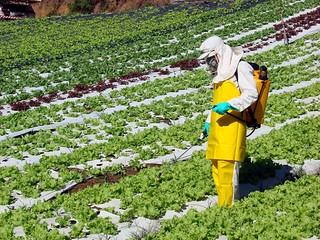 Pesquisador analisa a situação dos agrotóxicos e a fragilidade da Anvisa