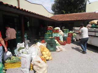 Produção de assentados no Paraná atenderá a 5 mil pessoas em 2015