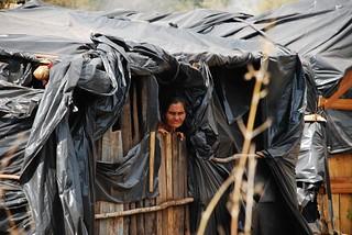 Cerca de 200 mil camponeses continuam sem ter uma área para cultivar