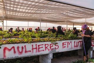 Após ocupação na Suzano, camponeses ocupam prédio da CTNBio