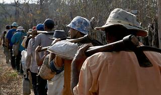 Sakamoto: o Brasil vai desistir de combater o trabalho escravo?