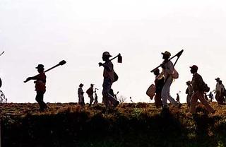 Livro fala sobre a resistência dos trabalhadores na cidade e no campo