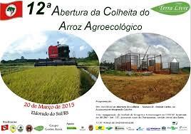 Dilma participa de abertura da 12° Festa da Colheita do Arroz Agroecológico