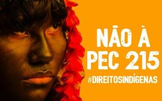 Brasília será palco do I Acampamento Terra Livre em Defesa dos Povos Indígenas