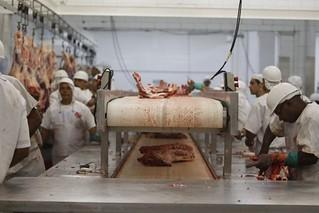 Friboi é alvo de ações milionárias por falta de segurança em seus frigoríficos