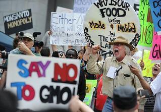 União Europeia se aproxima da Monsanto e aprova importação de transgênicos