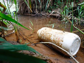 Estudo diz que contaminação da água por inseticidas é subestimada