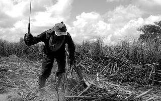 Congresso tira direitos de trabalhadores rurais