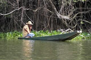 Por que o Marco da Biodiversidade divide famacêuticas e ambientalistas?