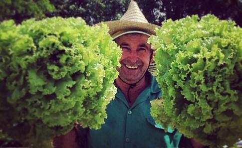 Produção orgânica, Reforma Agrária, preservação florestal: a história do Sítio A Boa Terra