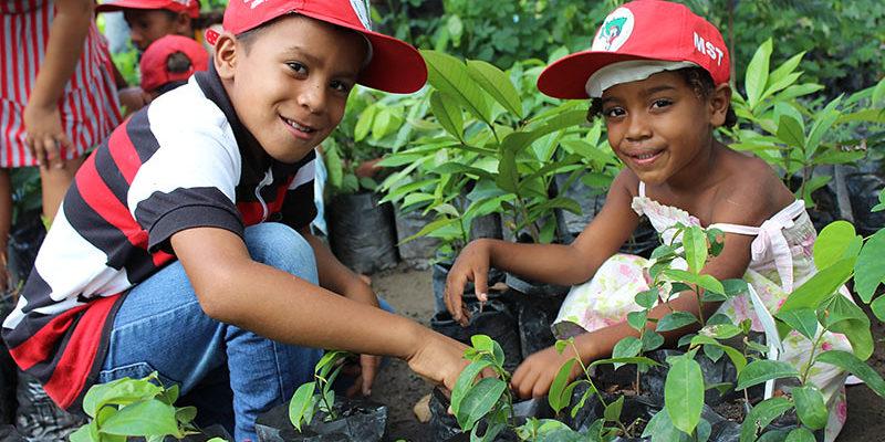 Sem Terrinha cultivam 3 mil mudas e ajudam a reflorestar assentamento