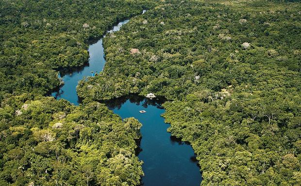 Quanto vale a biodiversidade brasileira?