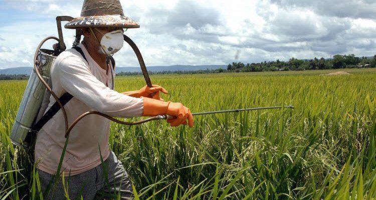 Luta pela regulamentação dos agrotóxicos eclode na Bahia