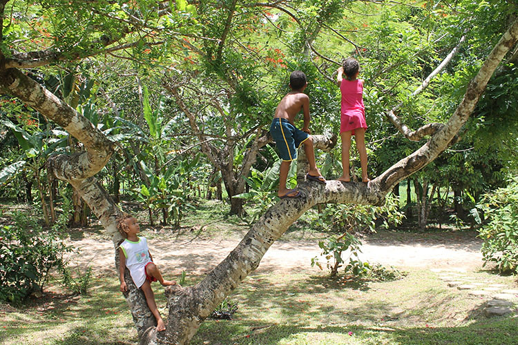 as crianças brincam com qualidade de vida!!!.jpg