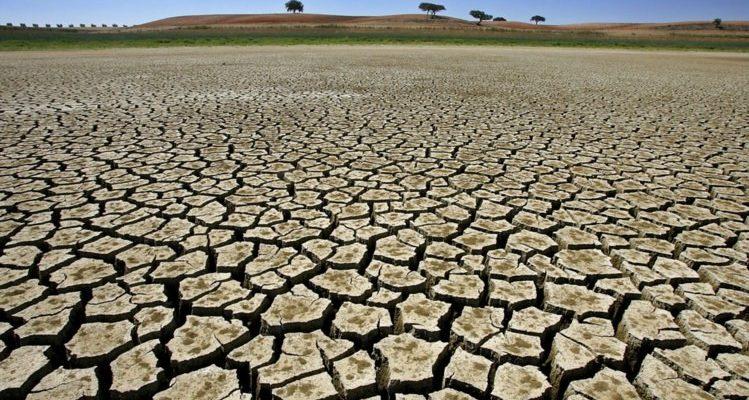 Especialista alerta para degradação e desertificação no Semiárido