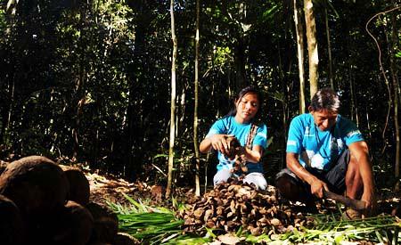 MPF recomenda participação dos povos tradicionais na Lei da Biodiversidade
