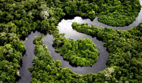 Amazônia: verdades que não se curam
