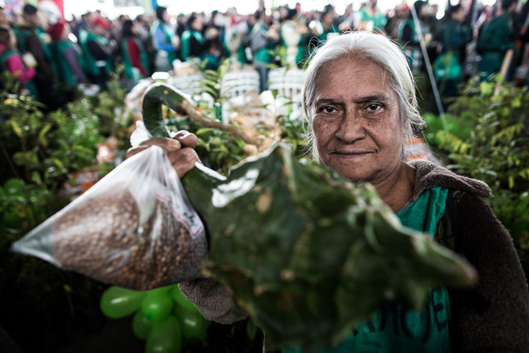 Jornada de agroecologia afirma urgência de um novo projeto de agricultura para o campo brasileiro