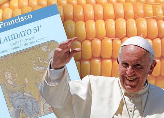 Papa Francisco se une à batalha contra os transgênicos