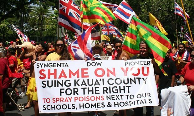 Revolta no Havaí: população protesta contra os agrotóxicos e transgênicos