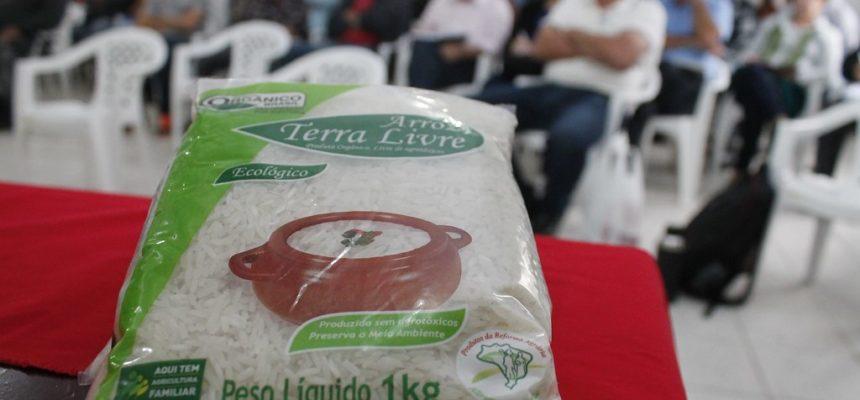 Assentados do RS planejam cultivo do arroz agroecológico