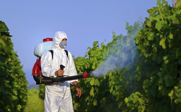 Agrotóxico: o inimigo entre nós