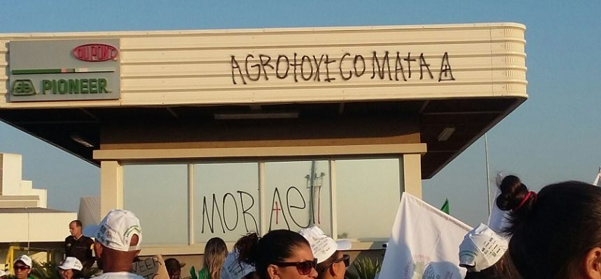 Camponeses ocupam a empresa de transgênicos DuPont, em Goiás