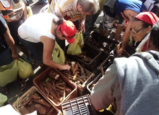 Contra despejos, Sem Terra fecham BR e distribuem alimentos na Paraíba