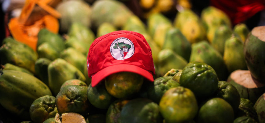 1º Feira Nacional da Reforma Agrária chega em SP com alimentos saudáveis a preços acessíveis