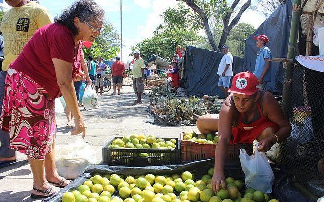 Encontro discute o protagonismo das mulheres na produção orgânica de alimentos
