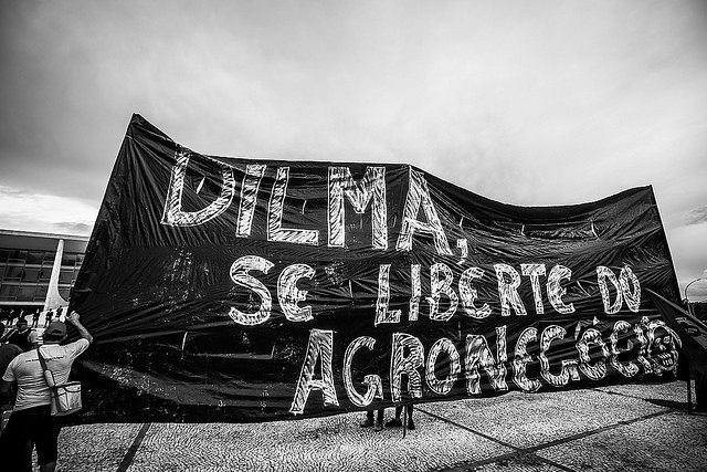 Organizações assinam manifesto pela imediata aprovação do Pronara