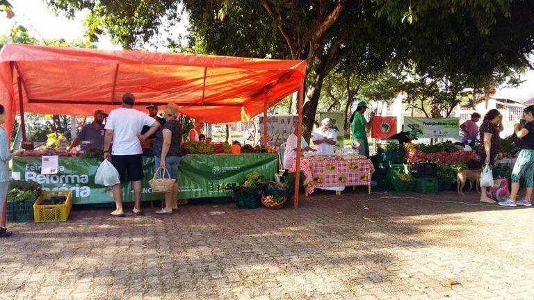 MST inaugura Feira Agroecológica na região Metropolitana de Porto Alegre