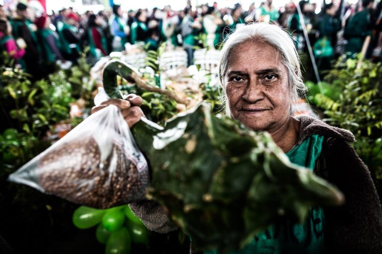 experiências comprovam que produção agroecológica é possível