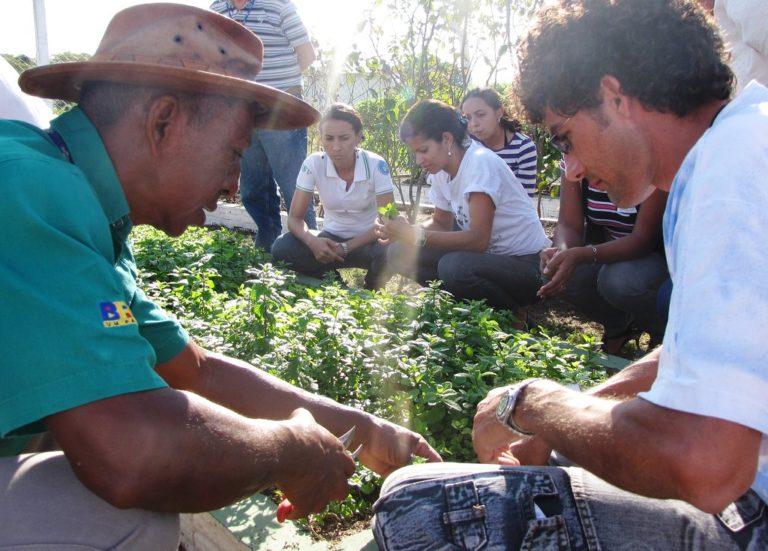 A resistência da agroecologia no Pantanal