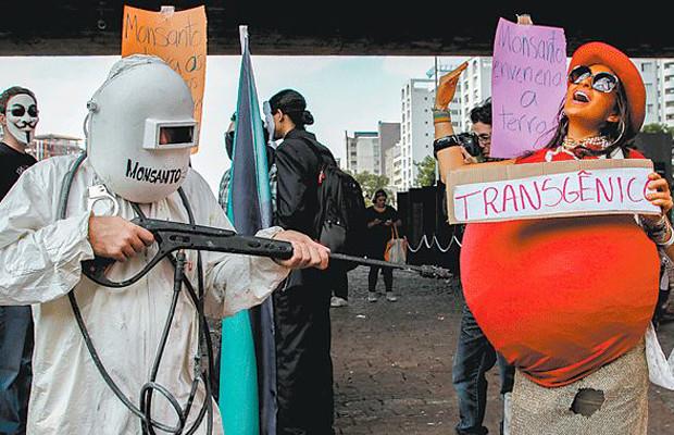 Manifestações pelo país marcarão Dia Mundial de Luta Contra os Agrotóxicos