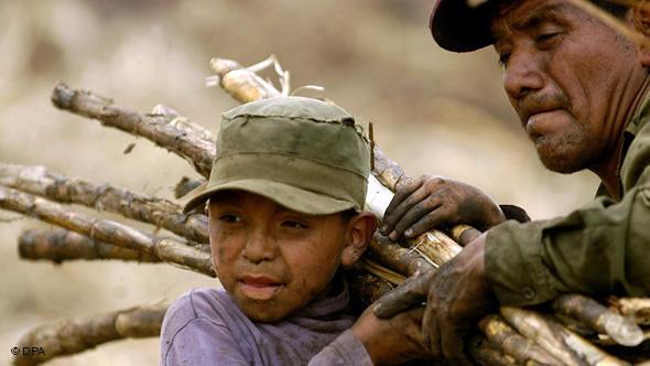 Diagnóstico sobre trabalho escravo diz que situação piora no país