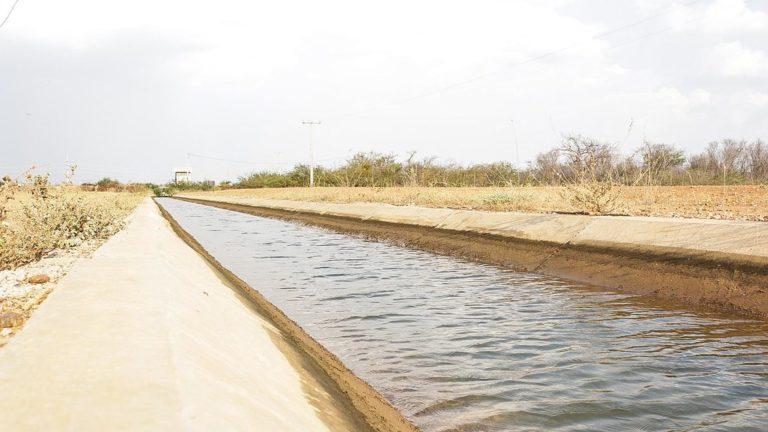 Resistência no semiárido: a luta pela terra nos perímetros irrigados